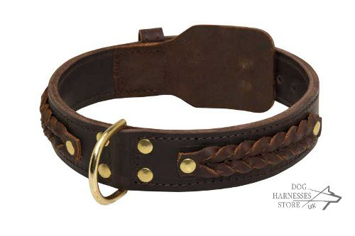Thick Dog Collar