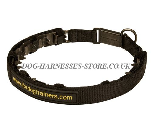 Prong Dog Collar UK