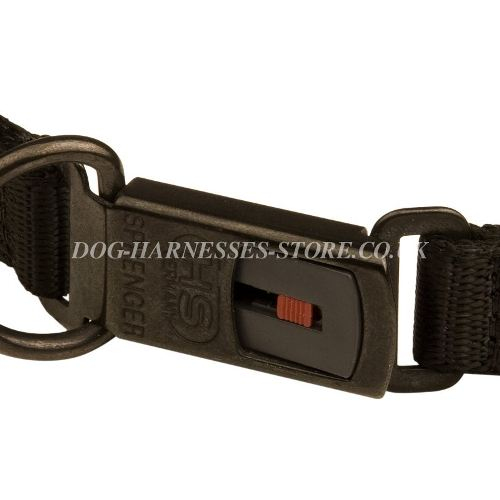 Metal Dog Collar