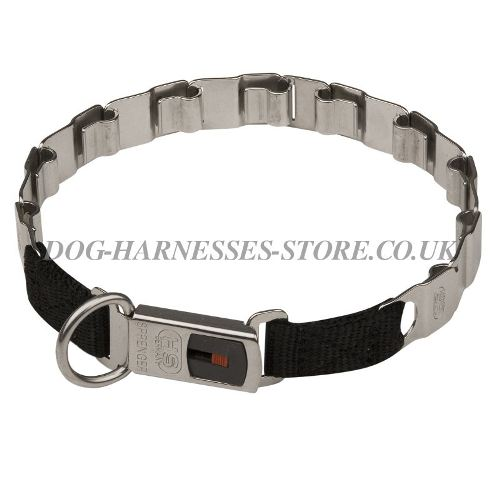 Prong Dog Collar