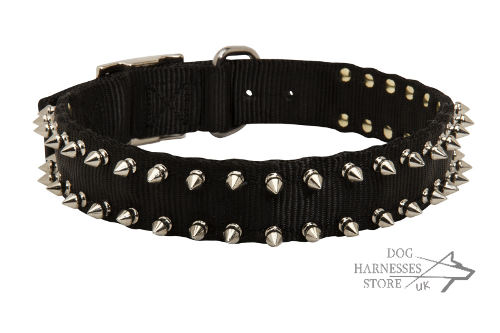 Spiked Dog Collar, Nylon