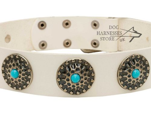 White Leather Dog Collar
