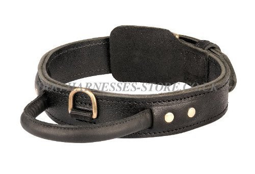 Agitation Dog Collar UK
