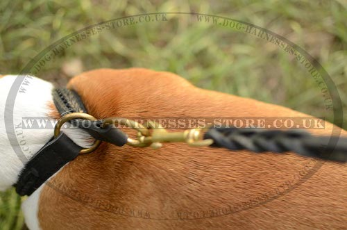 Amstaff Collar UK Leather Braided