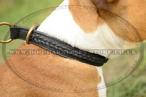 Amstaff Dog Collar Braided