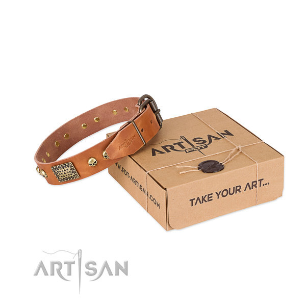 Artisan Dog Collar