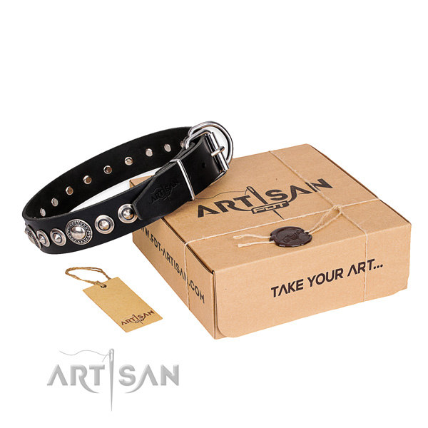Black Dog Collars UK
