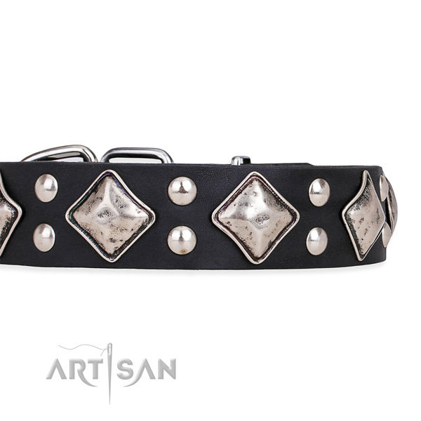 Black Leather Dog Collar UK