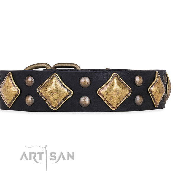 Black Leather Studded Dog Collar