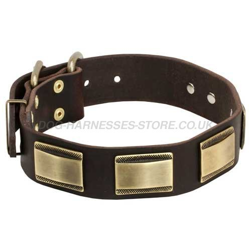 Plaited Leather Dog Collars