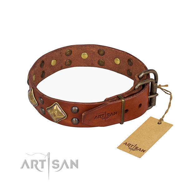 Buy Dog Collars Online UK