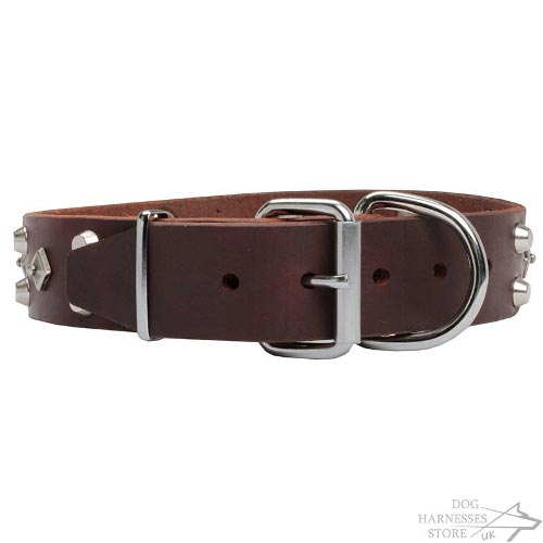 Haute Couture Dog Collars UK