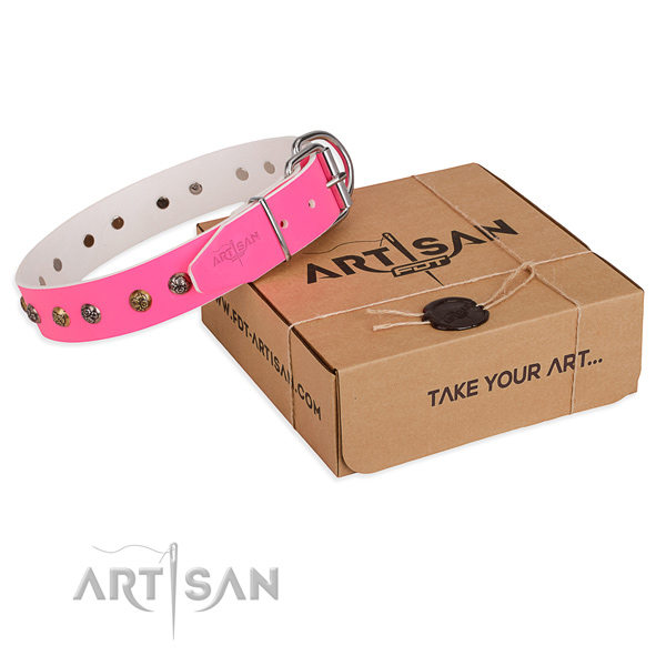 Cool Female Dog Collars