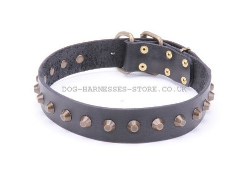 Cool Leather Dog Collars UK