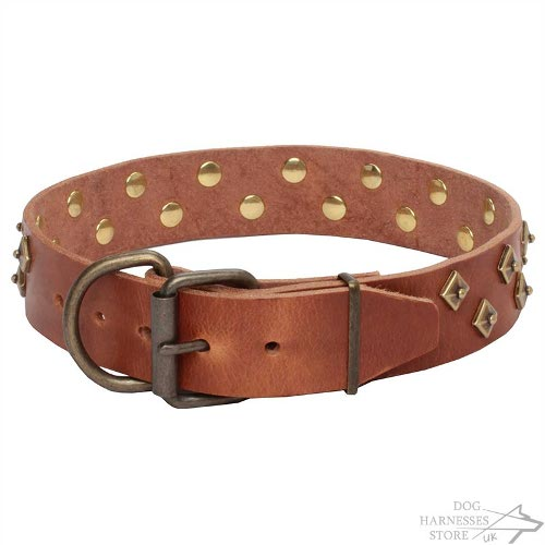 Haute Couture Dog Collars