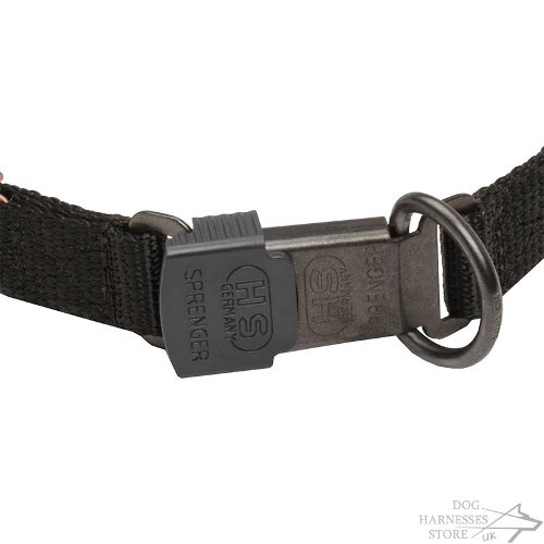 Curogan Dog Collar