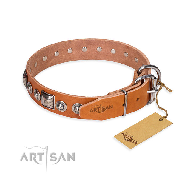Custom Dog Collars Leather