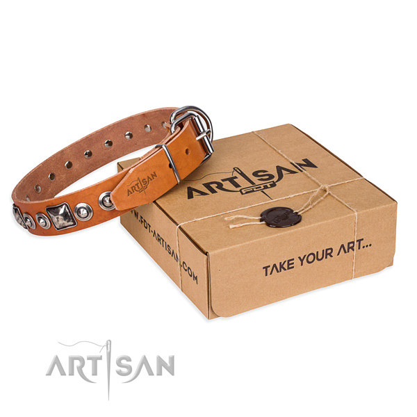 Custom Leather Collars for Dogs