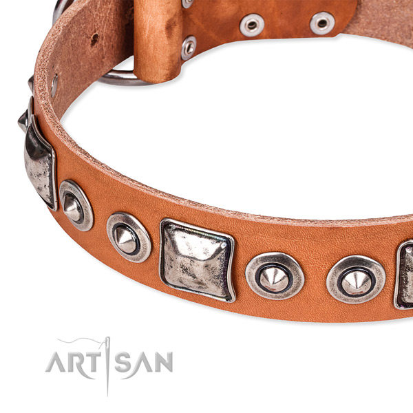 Custom Made Leather Dog Collars