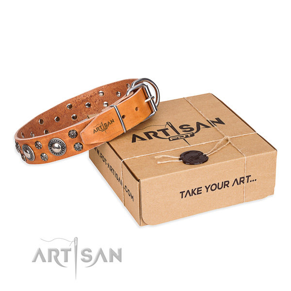 Designer Dog Collars UK