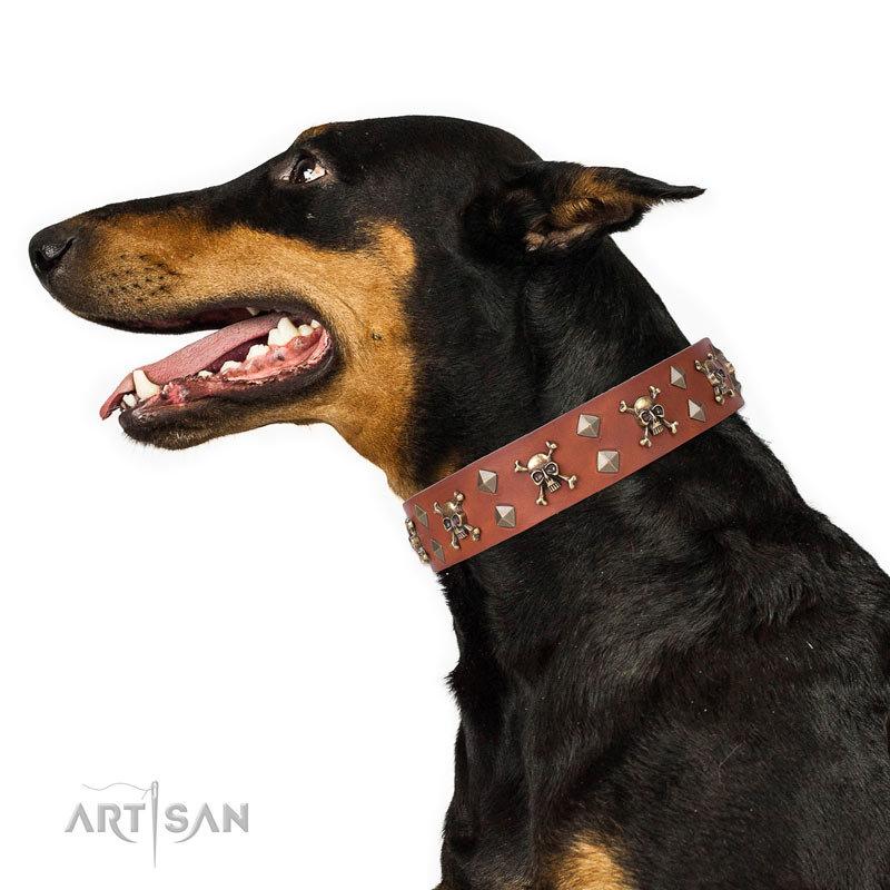 Black Dog Collar Seal
