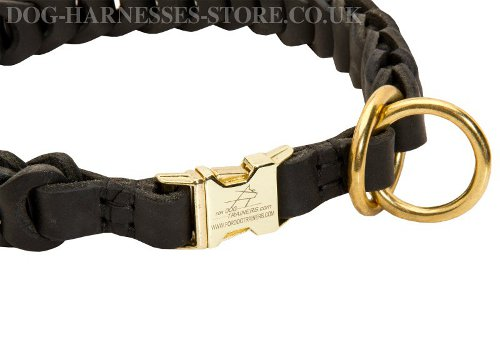 Dog Behavior Collar Training UK
