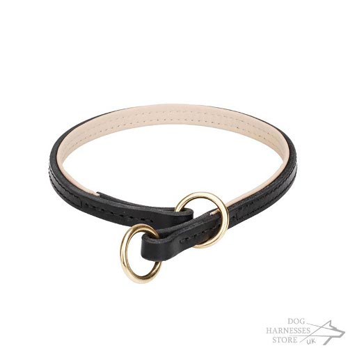 Dog Choke Collar Leather