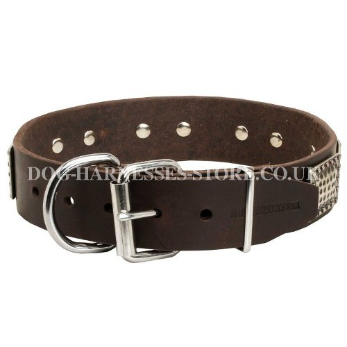 Dog Collar Ancient Style UK