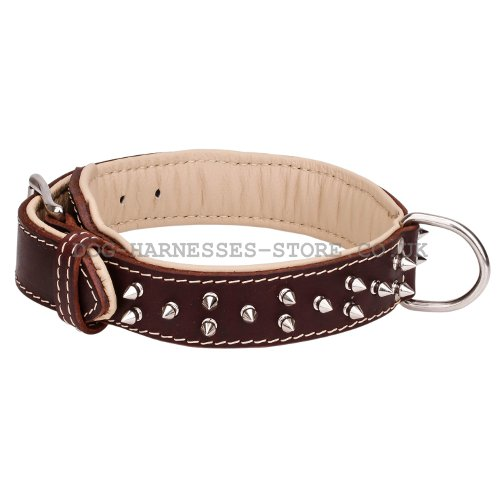Double Ply Leather Dog Collars