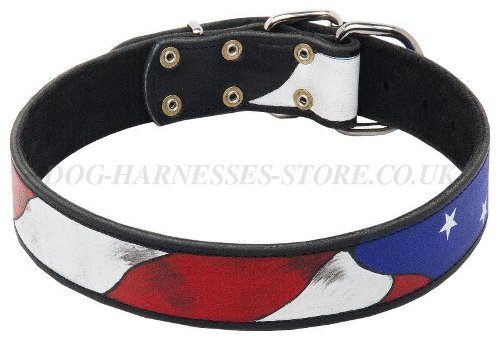 Doberman Pinscher Leather Collar