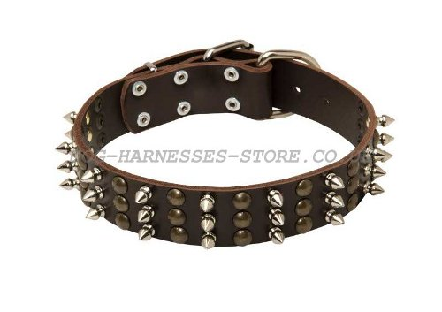 Fashion Leather Dog Collars