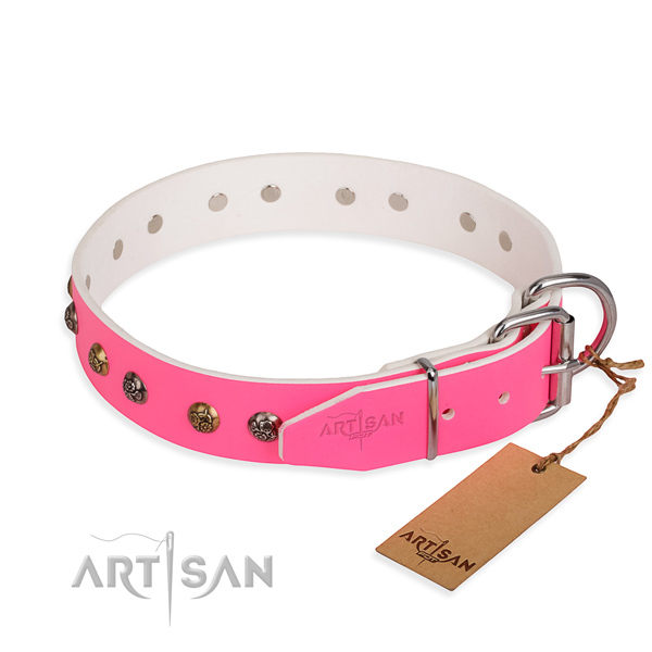 Female Dog Collars for Sale