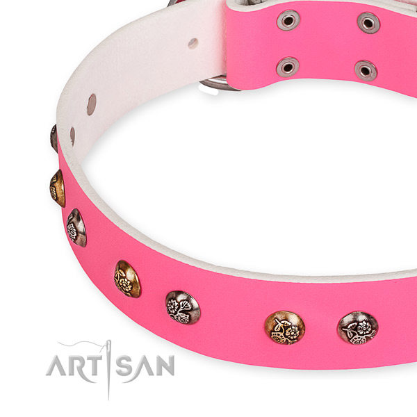 Female Dog Collars UK