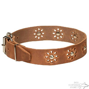Floral Leather Dog Collar UK