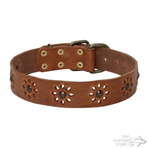 Floral Leather Dog Collar