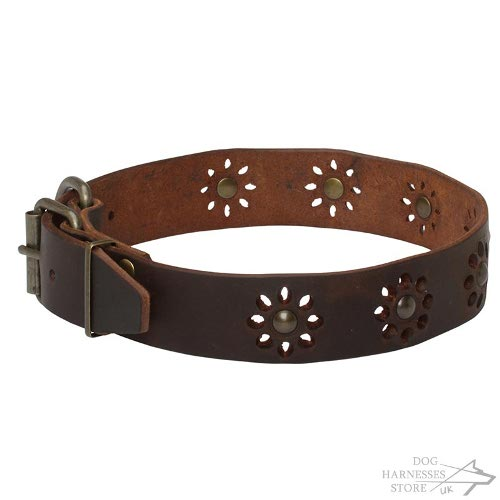Flower Dog Collar UK