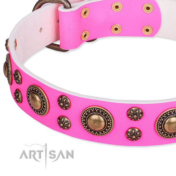 Girl Dog Collar UK
