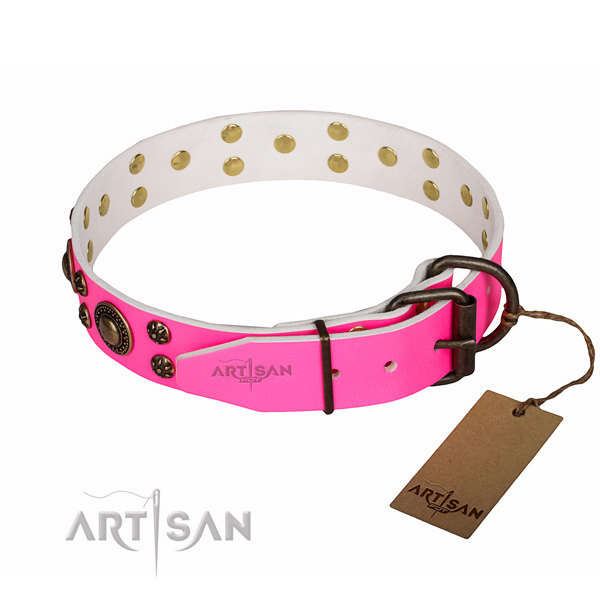 Girl Dog Collars