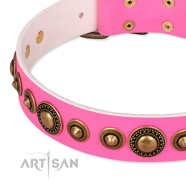 Girl Dog Collars UK