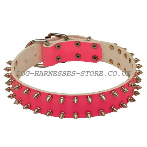 Girly Dog Collars UK