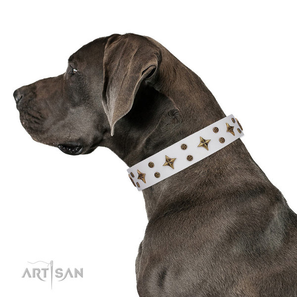Great Dane Dog Collars Leather
