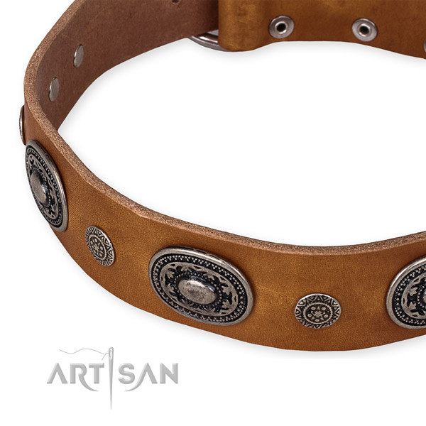 Handmade Leather Dog Collar UK