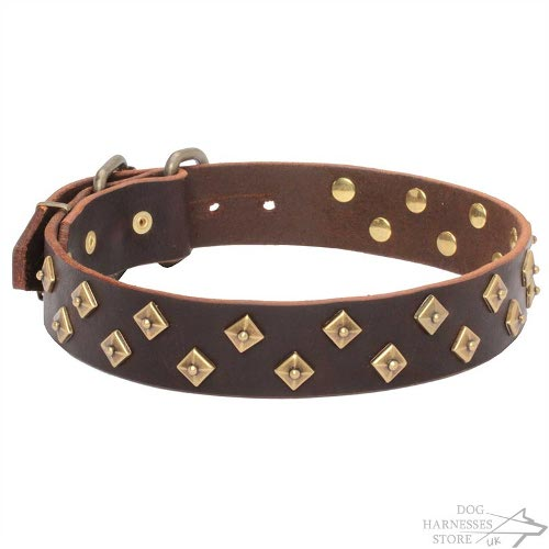 Couture Dog Collars UK