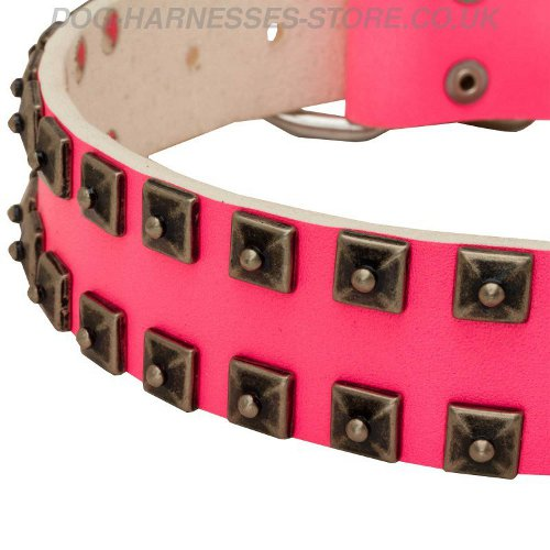 Hot Pink Studded Dog Collar