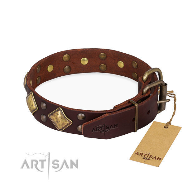 Large Brown Leather Dog Collar