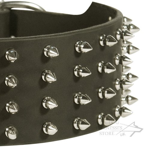 Leather Collar for Large Dog