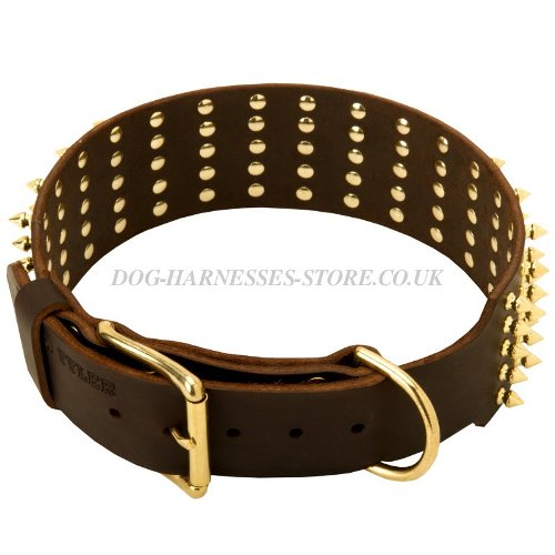 Extra Wide Dog Collars