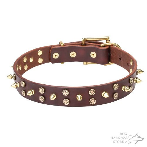 Leather Dog Collar, Brass Spiked and Star Studded