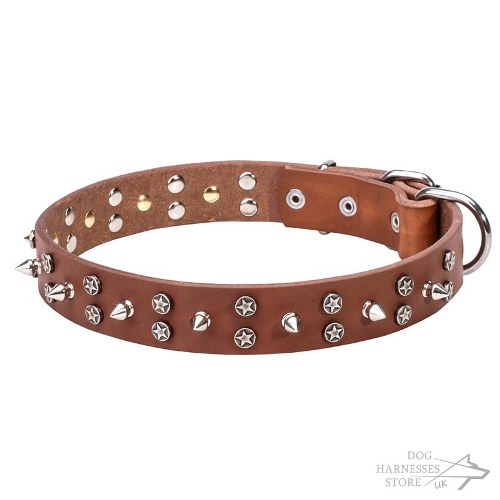 Leather Dog Collar UK, Spikes and Stars