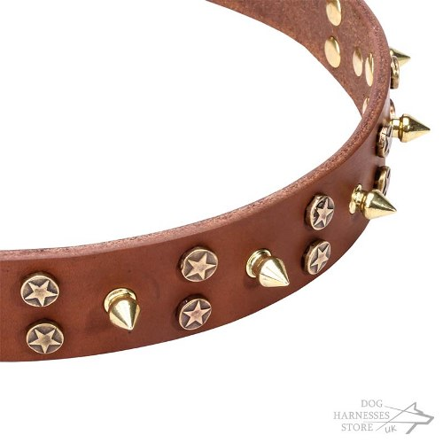 Leather Dog Collar UK, Brass Spikes and Stars
